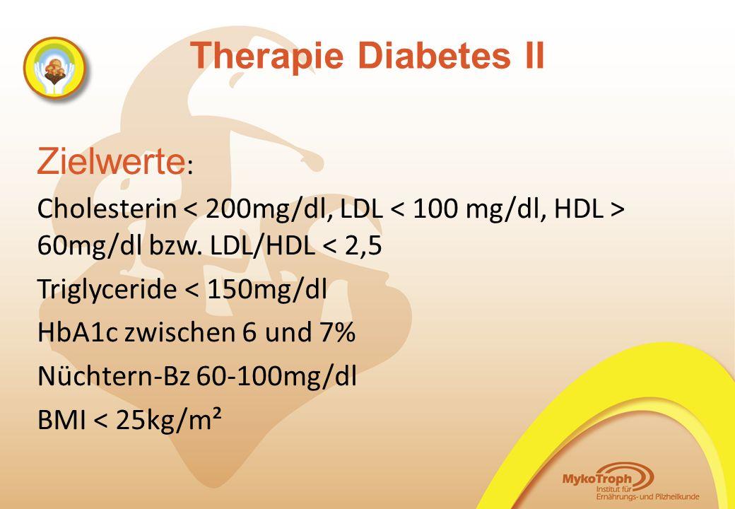 Therapie Diabetes II Zielwerte: