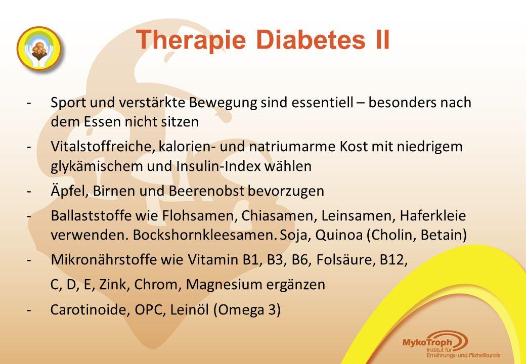 06.11.14 06.11.14. Therapie Diabetes II. Sport und verstärkte Bewegung sind essentiell – besonders nach dem Essen nicht sitzen.