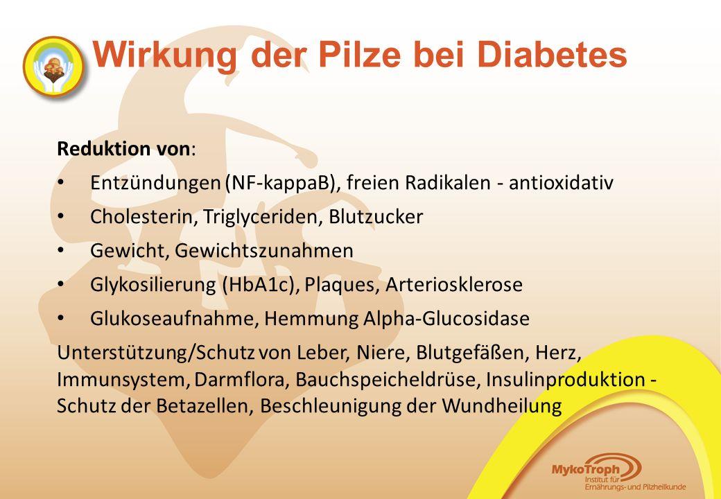 Wirkung der Pilze bei Diabetes