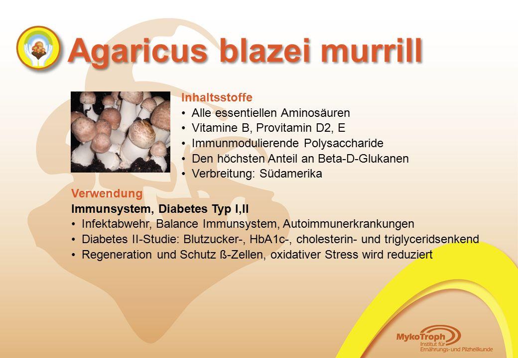 Alle essentiellen Aminosäuren Vitamine B, Provitamin D2, E