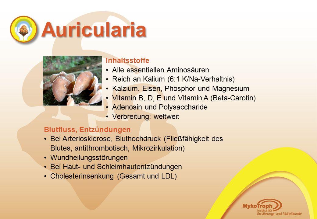 Alle essentiellen Aminosäuren Reich an Kalium (6:1 K/Na-Verhältnis)