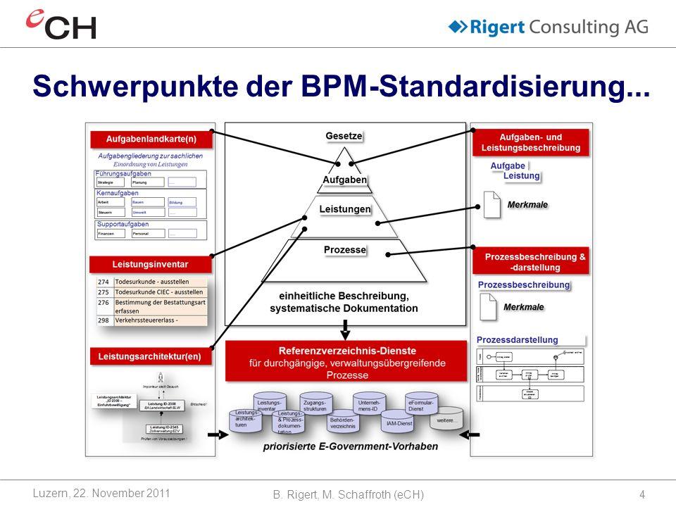Schwerpunkte der BPM-Standardisierung...