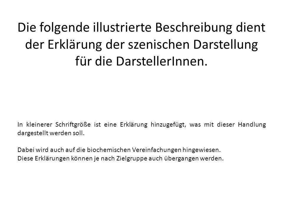 Die folgende illustrierte Beschreibung dient der Erklärung der szenischen Darstellung für die DarstellerInnen.