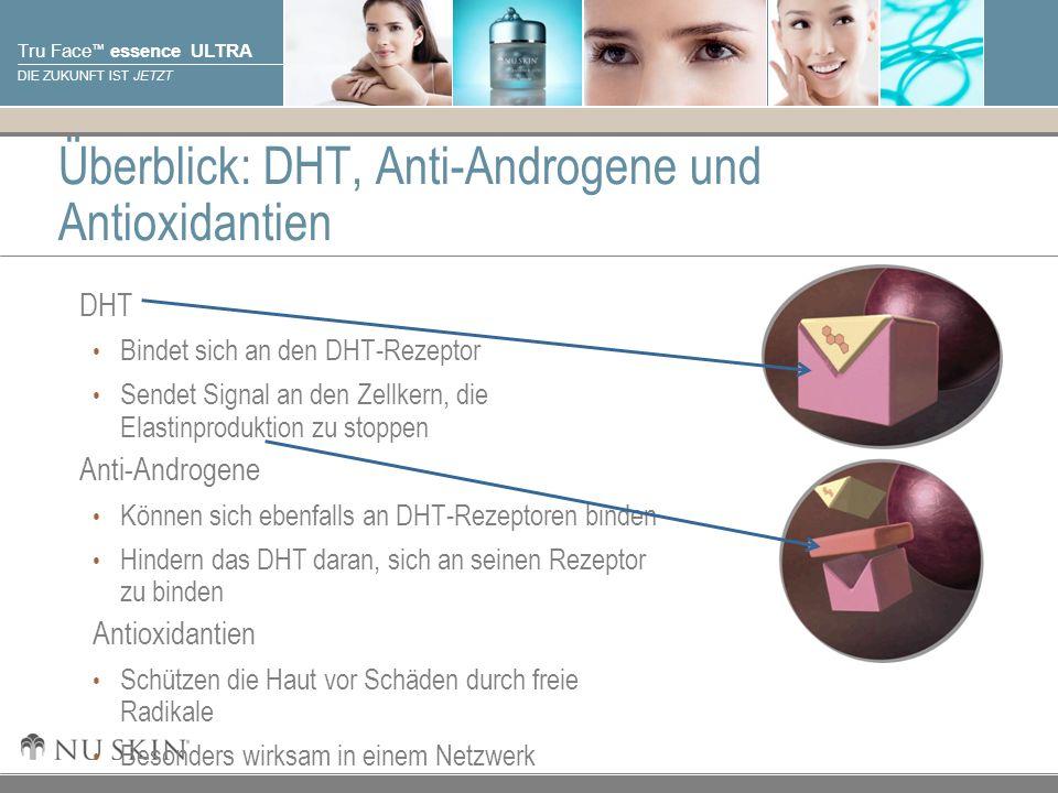 Überblick: DHT, Anti-Androgene und Antioxidantien