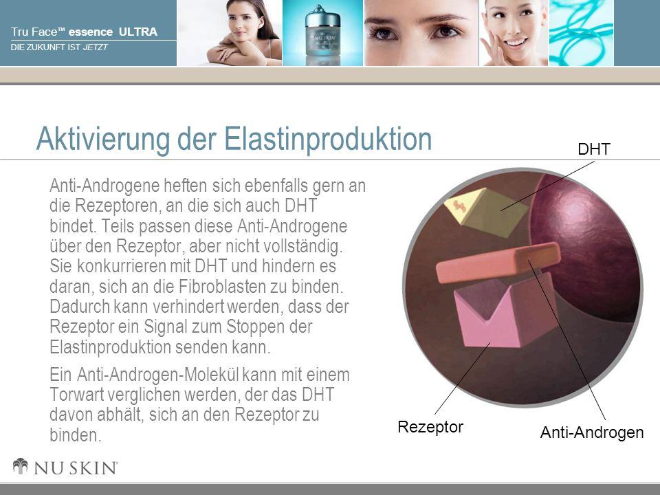 Aktivierung der Elastinproduktion