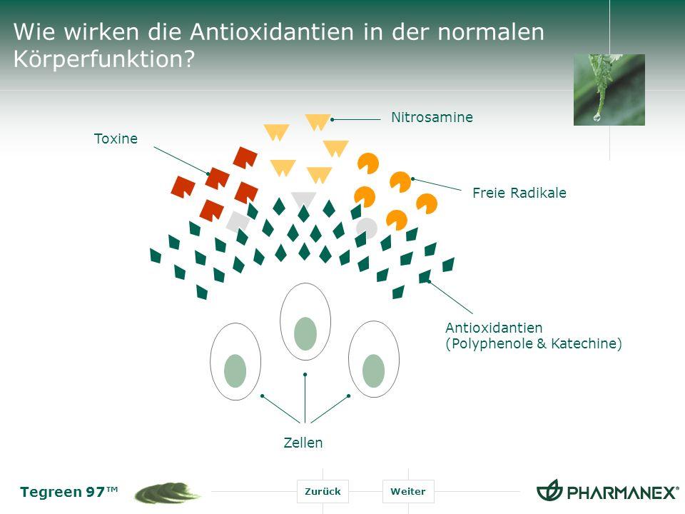 Wie wirken die Antioxidantien in der normalen Körperfunktion