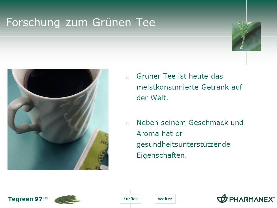 Forschung zum Grünen Tee