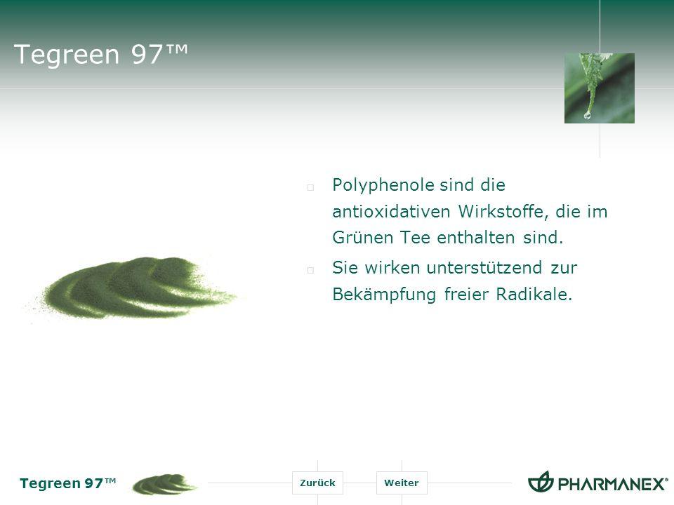 Tegreen 97™ Polyphenole sind die antioxidativen Wirkstoffe, die im Grünen Tee enthalten sind.