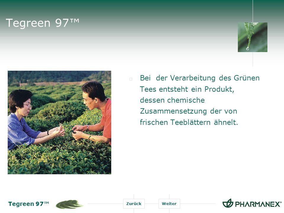 Tegreen 97™ Bei der Verarbeitung des Grünen Tees entsteht ein Produkt, dessen chemische Zusammensetzung der von frischen Teeblättern ähnelt.