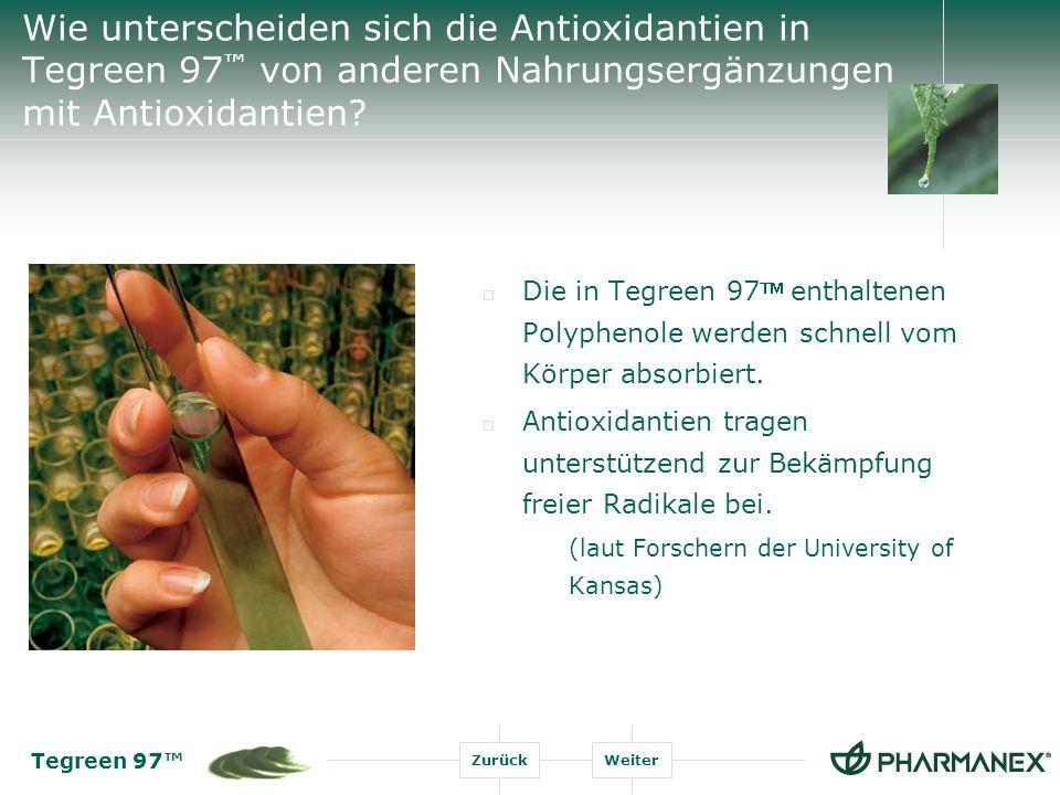 Wie unterscheiden sich die Antioxidantien in Tegreen 97™ von anderen Nahrungsergänzungen mit Antioxidantien