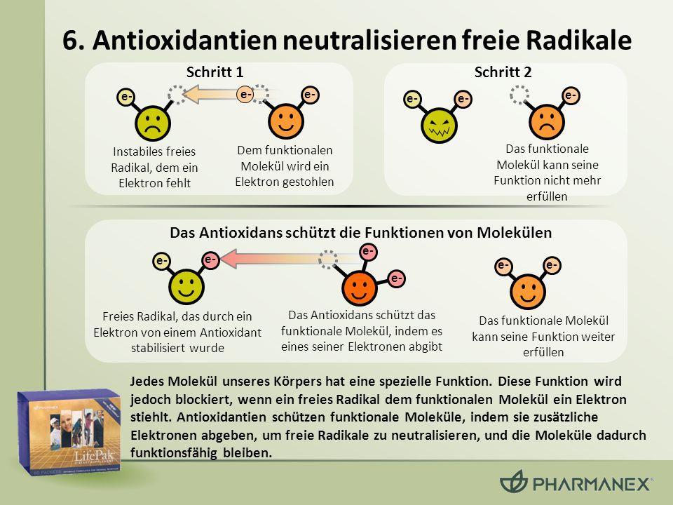 6. Antioxidantien neutralisieren freie Radikale