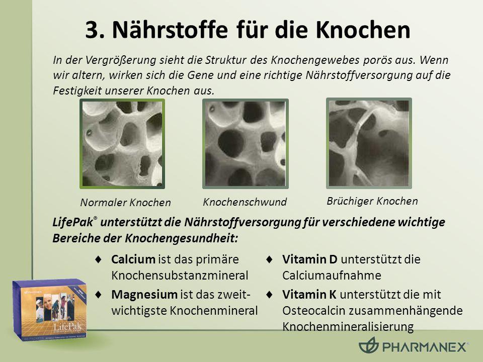 3. Nährstoffe für die Knochen