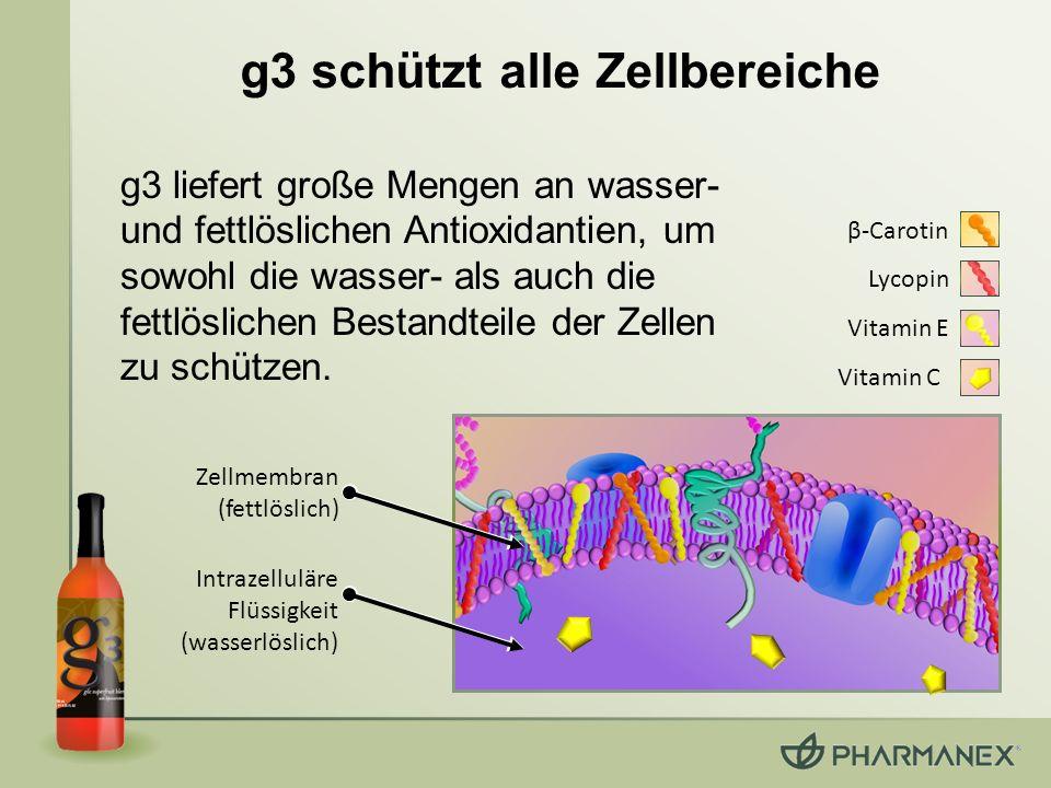 g3 schützt alle Zellbereiche