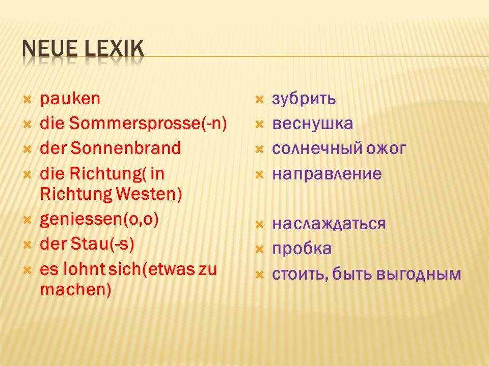 Neue Lexik pauken die Sommersprosse(-n) der Sonnenbrand