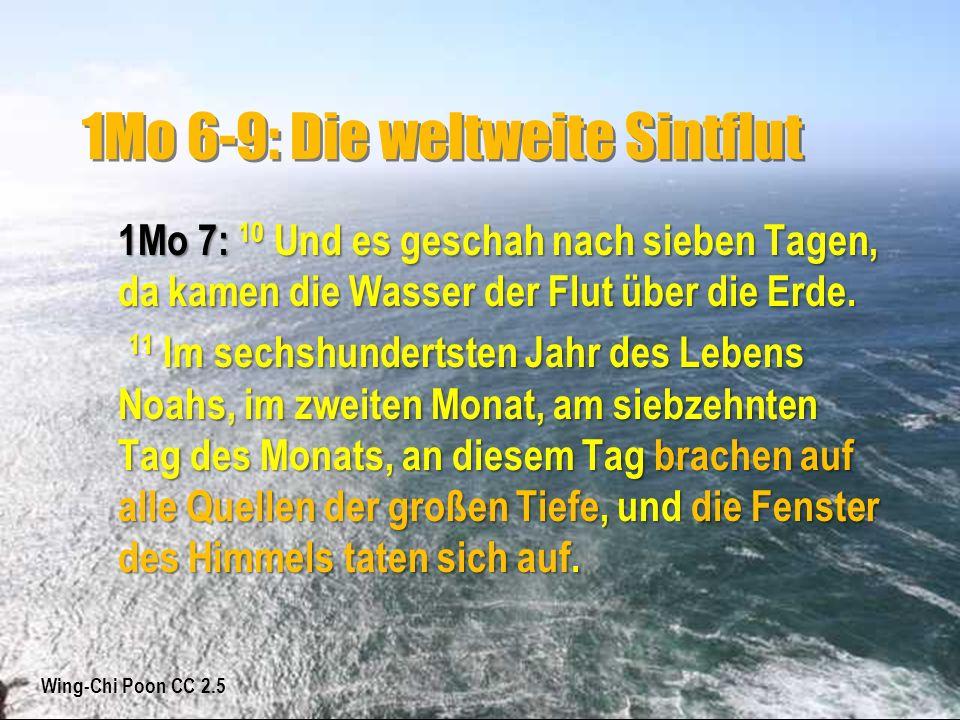1Mo 6-9: Die weltweite Sintflut