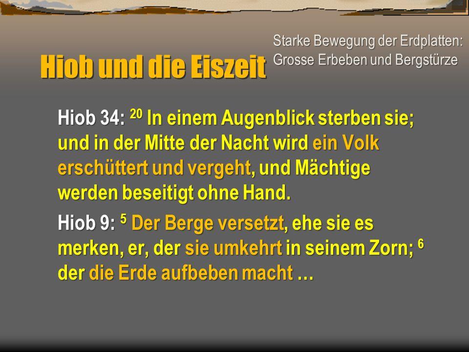 Hiob und die Eiszeit Starke Bewegung der Erdplatten: Grosse Erbeben und Bergstürze.