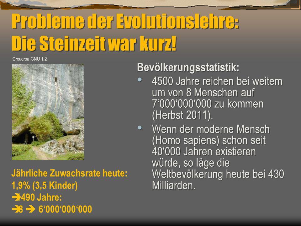 Probleme der Evolutionslehre: Die Steinzeit war kurz!