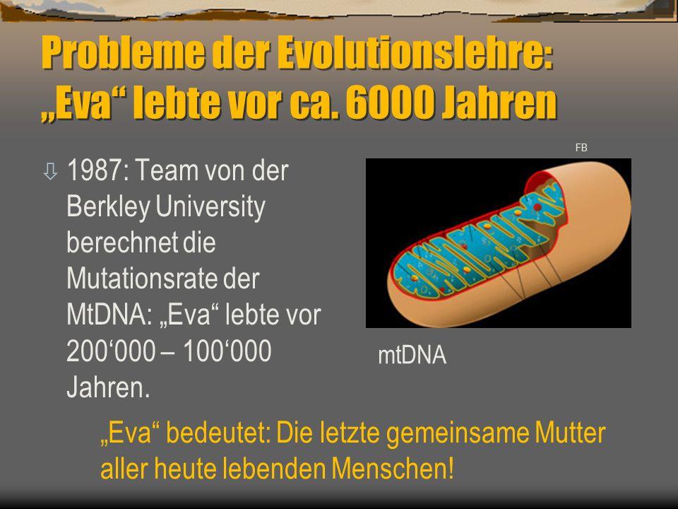 """Probleme der Evolutionslehre: """"Eva lebte vor ca. 6000 Jahren"""