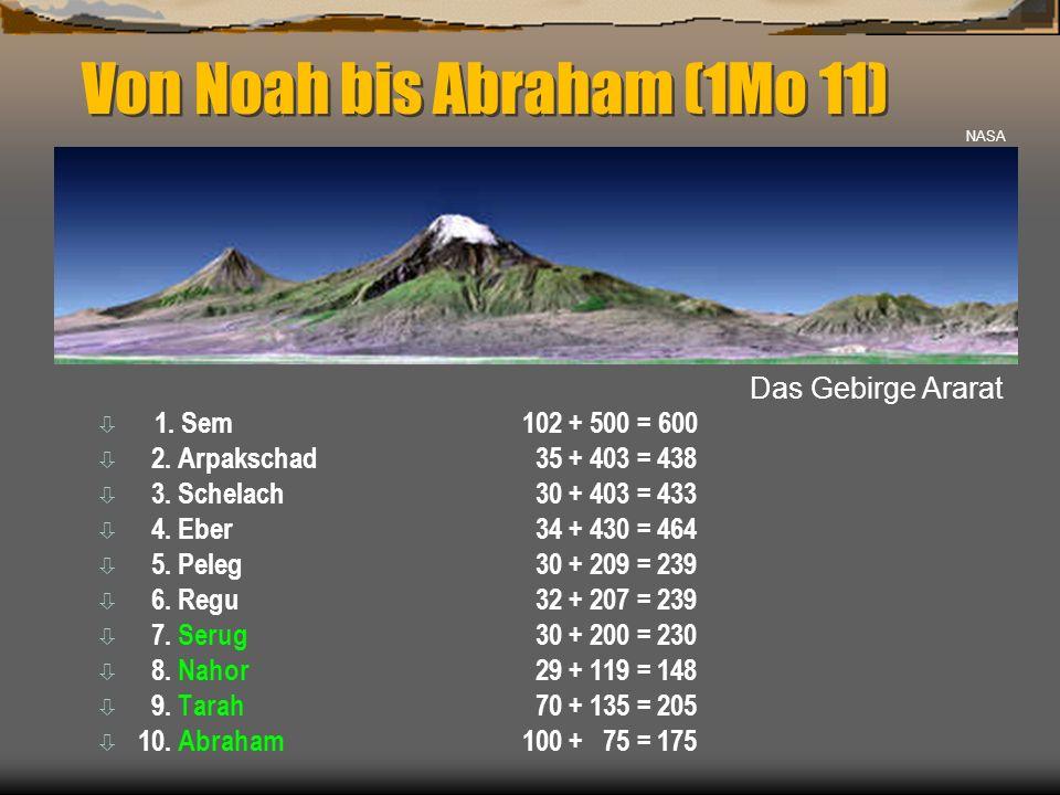 Von Noah bis Abraham (1Mo 11)