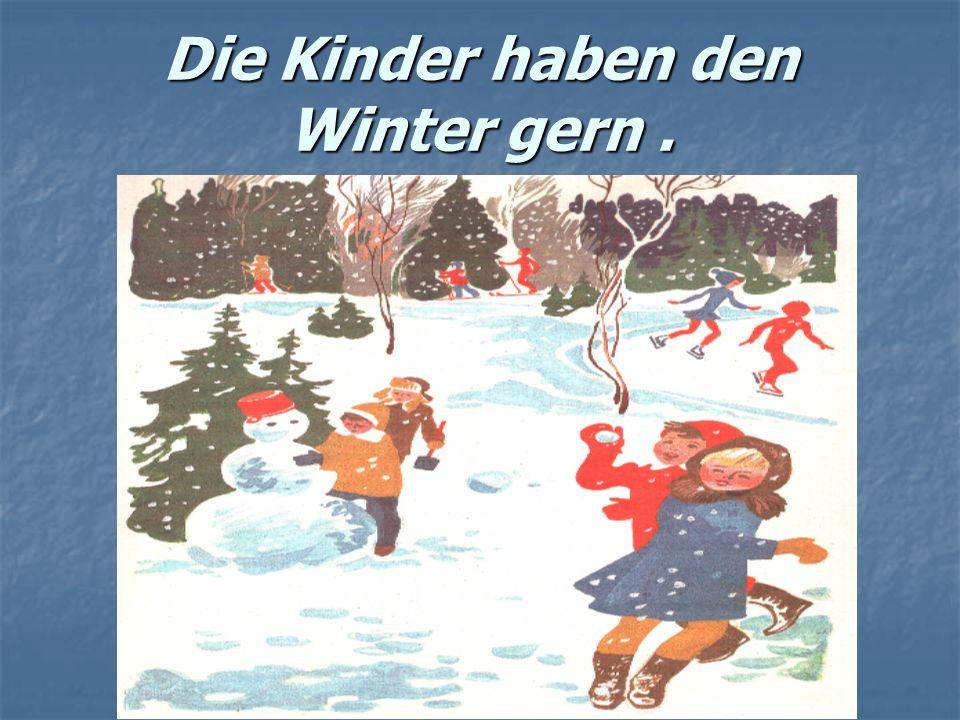 Die Kinder haben den Winter gern .