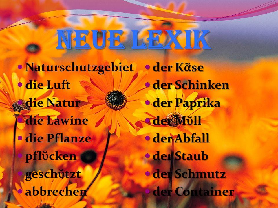 Neue Lexik Naturschutzgebiet die Luft die Natur die Lawine die Pflanze