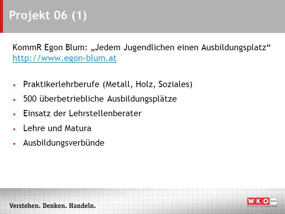 """Projekt 06 (1) KommR Egon Blum: """"Jedem Jugendlichen einen Ausbildungsplatz http://www.egon-blum.at."""
