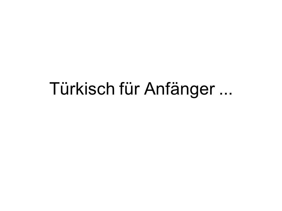 Türkisch für Anfänger ...