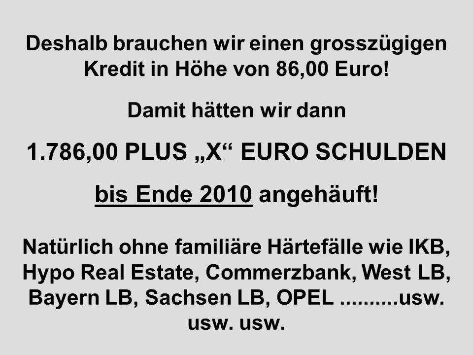 Deshalb brauchen wir einen grosszügigen Kredit in Höhe von 86,00 Euro!