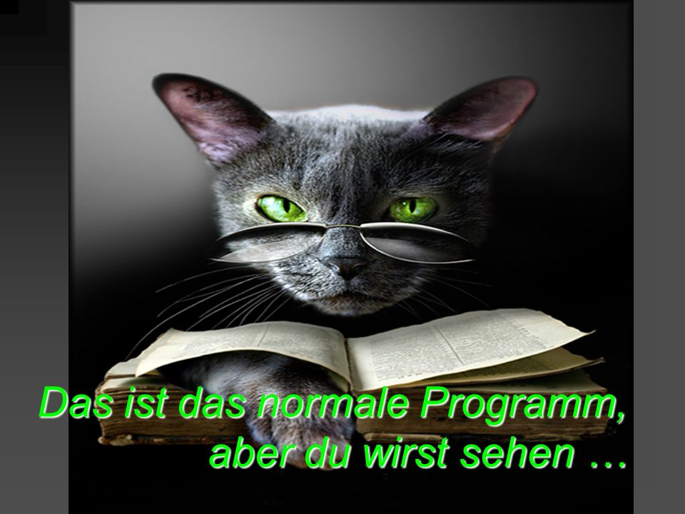 Das ist das normale Programm, aber du wirst sehen …