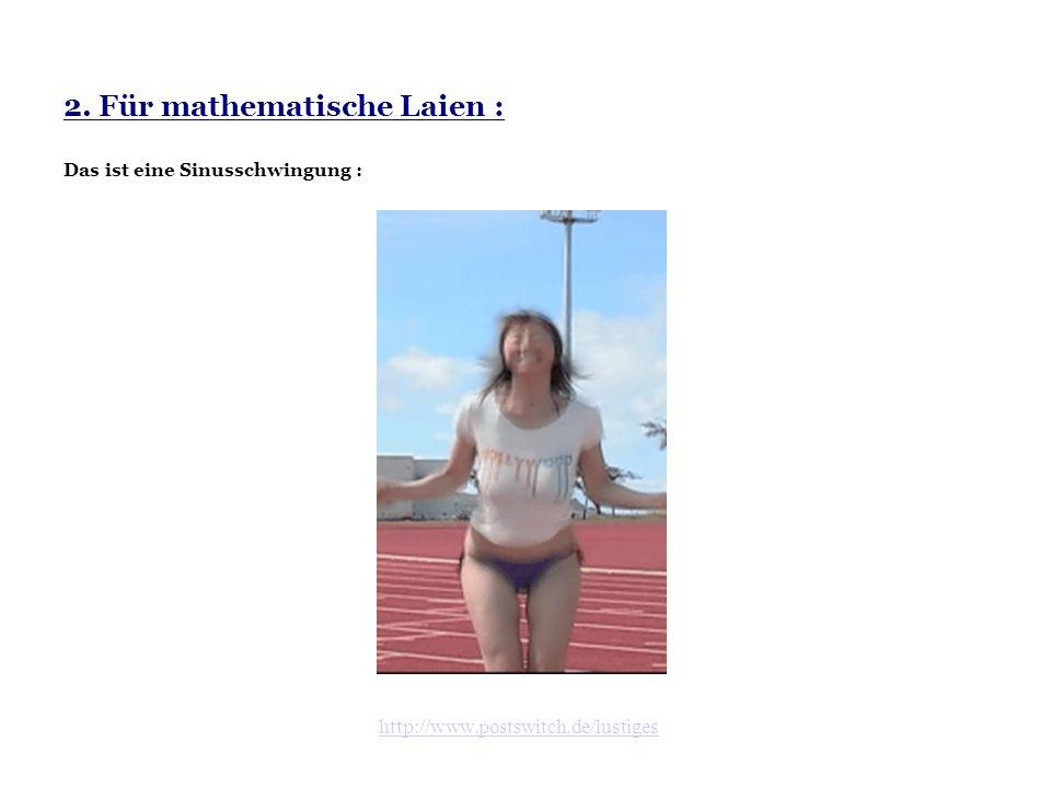 2. Für mathematische Laien : Das ist eine Sinusschwingung :