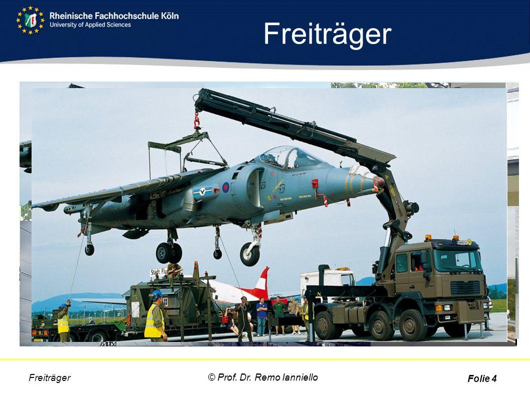 Freiträger Freiträger © Prof. Dr. Remo Ianniello