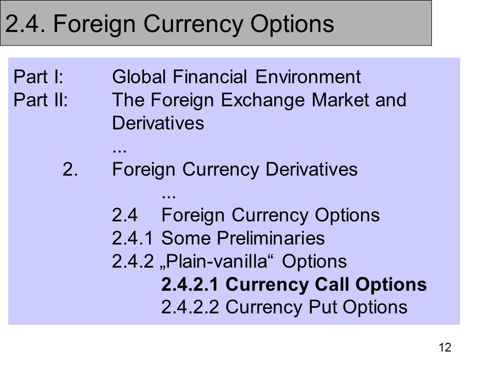 2.4. Foreign Currency Options