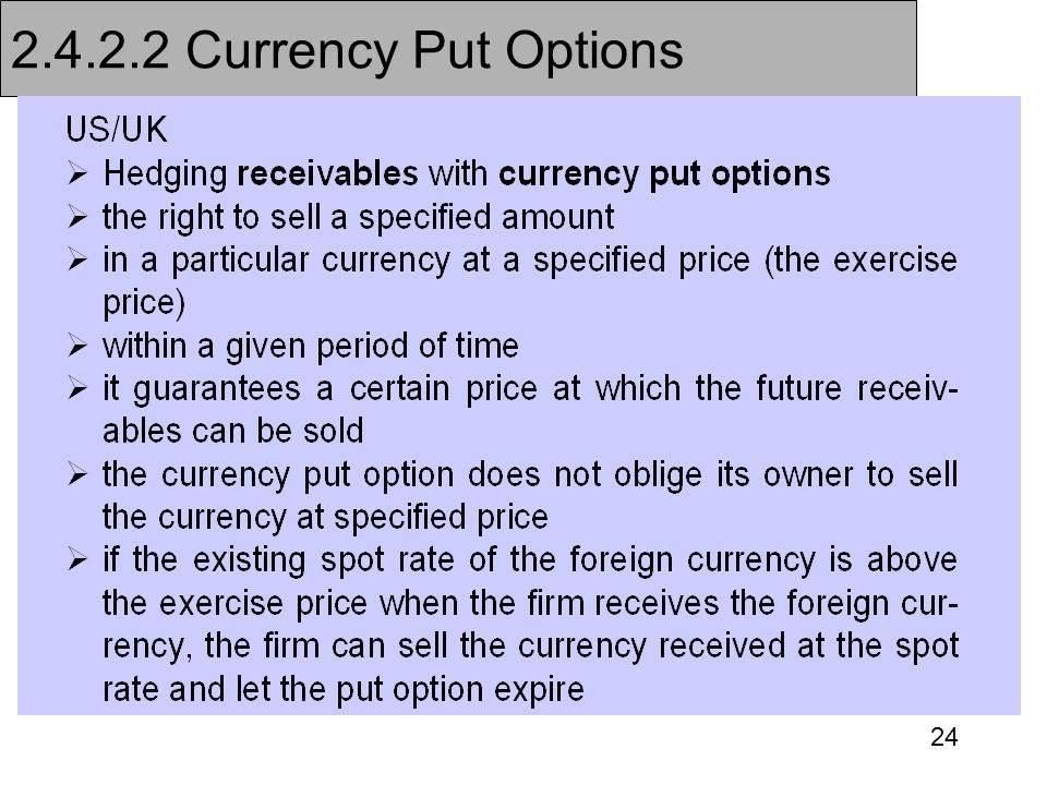 2.4.2.2 Currency Put Options