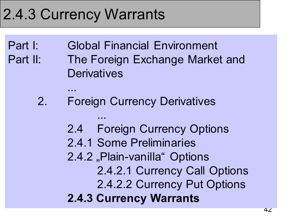 2.4.3 Currency Warrants