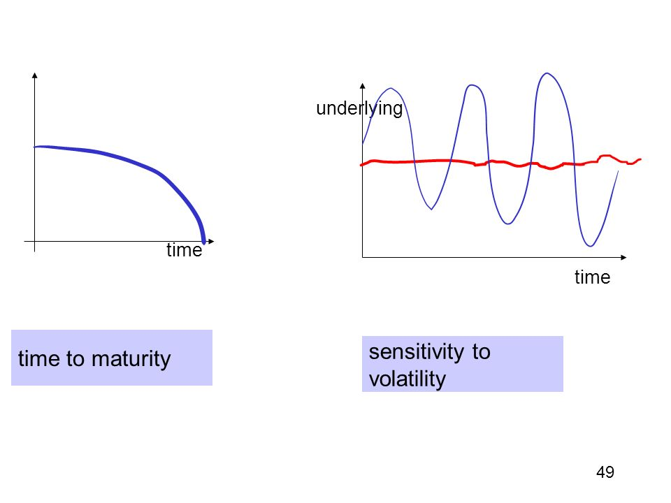 sensitivity to volatility