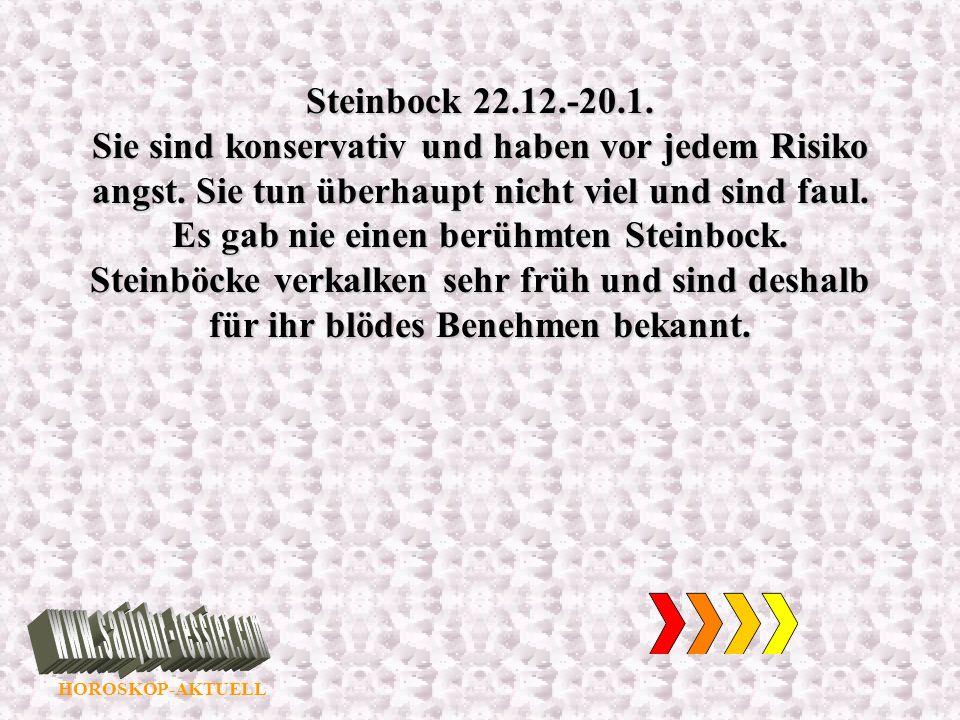 Steinbock 22.12.-20.1. Sie sind konservativ und haben vor jedem Risiko angst.
