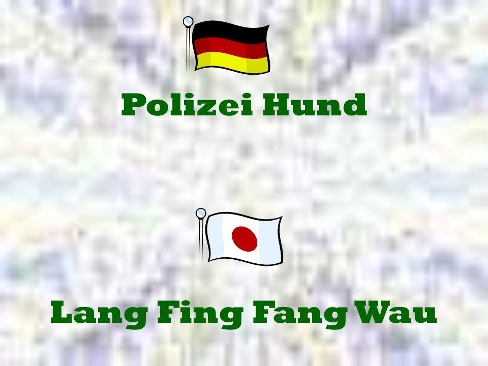 Polizei Hund Lang Fing Fang Wau