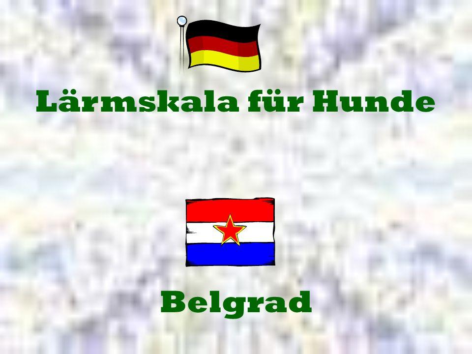 Lärmskala für Hunde Belgrad