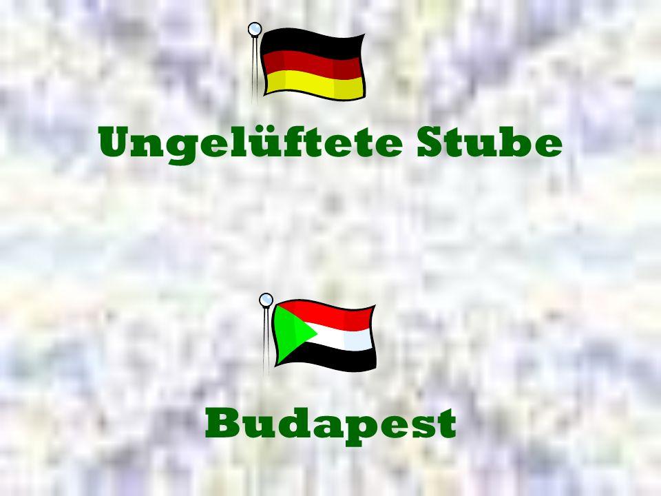 Ungelüftete Stube Budapest