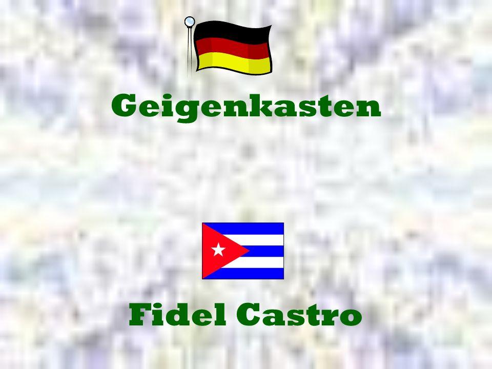 Geigenkasten Fidel Castro