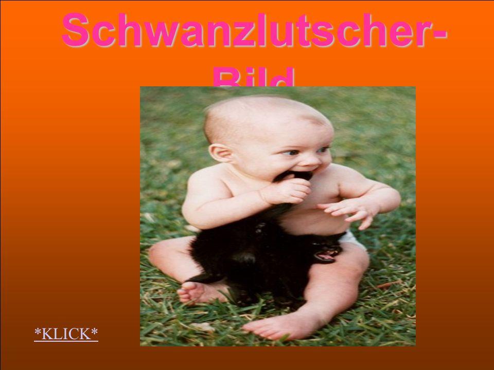 Schwanzlutscher-Bild