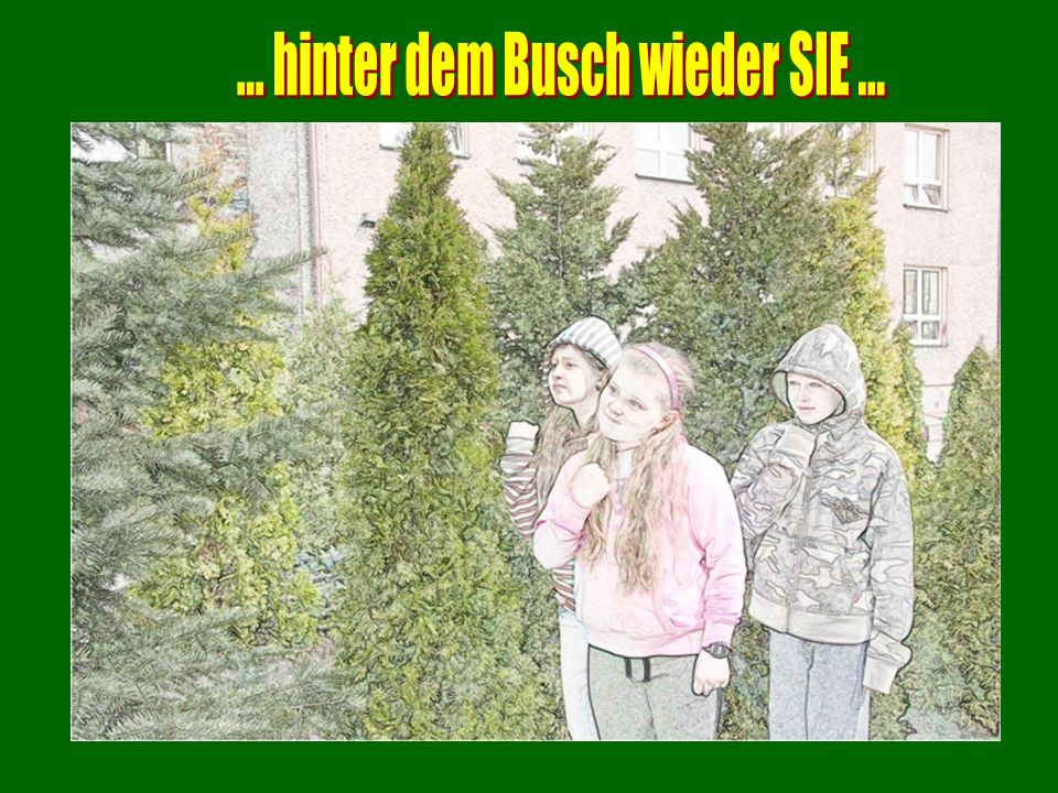 ... hinter dem Busch wieder SIE ...
