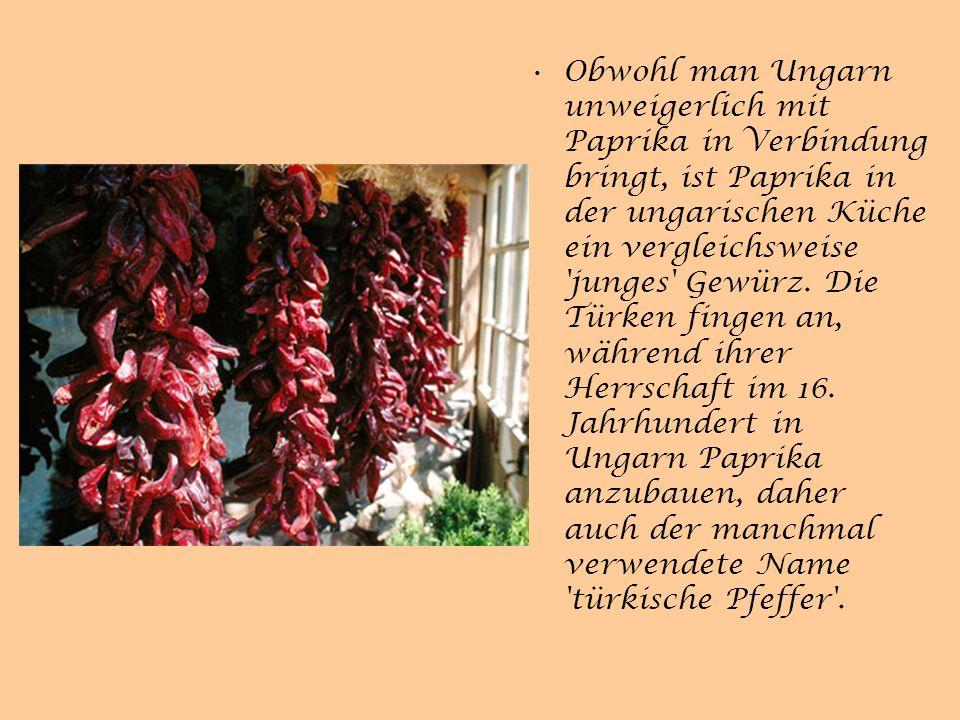 Obwohl man Ungarn unweigerlich mit Paprika in Verbindung bringt, ist Paprika in der ungarischen Küche ein vergleichsweise junges Gewürz.