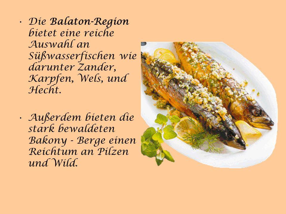 Die Balaton-Region bietet eine reiche Auswahl an Süßwasserfischen wie darunter Zander, Karpfen, Wels, und Hecht.