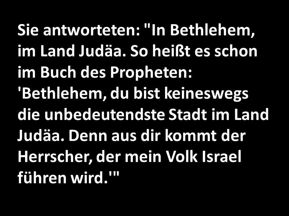 Sie antworteten: In Bethlehem, im Land Judäa