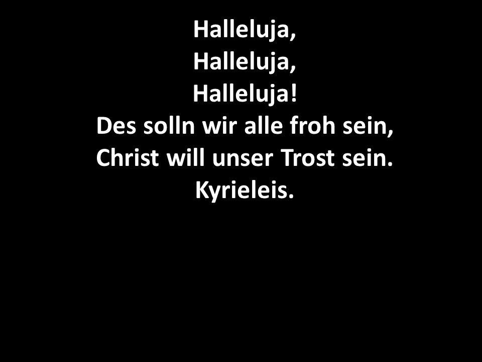 Halleluja, Halleluja, Halleluja