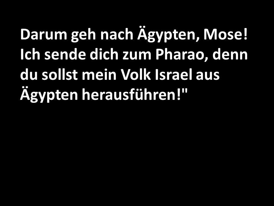 Darum geh nach Ägypten, Mose