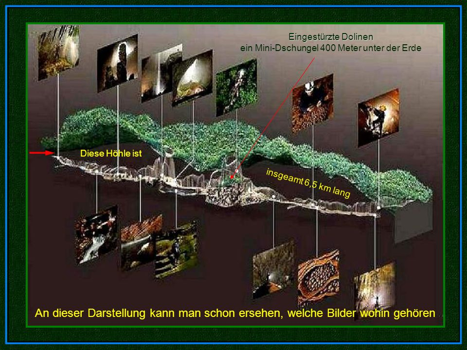 Eingestürzte Dolinen ein Mini-Dschungel 400 Meter unter der Erde