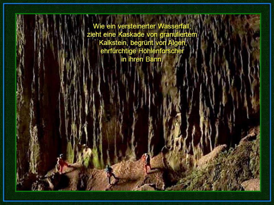 Wie ein versteinerter Wasserfall, zieht eine Kaskade von granuliertem Kalkstein, begrünt von Algen, ehrfürchtige Höhlenforscher in ihren Bann.