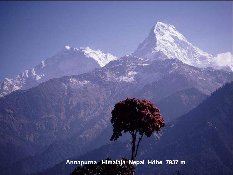Annapurna Himalaja Nepal Höhe 7937 m